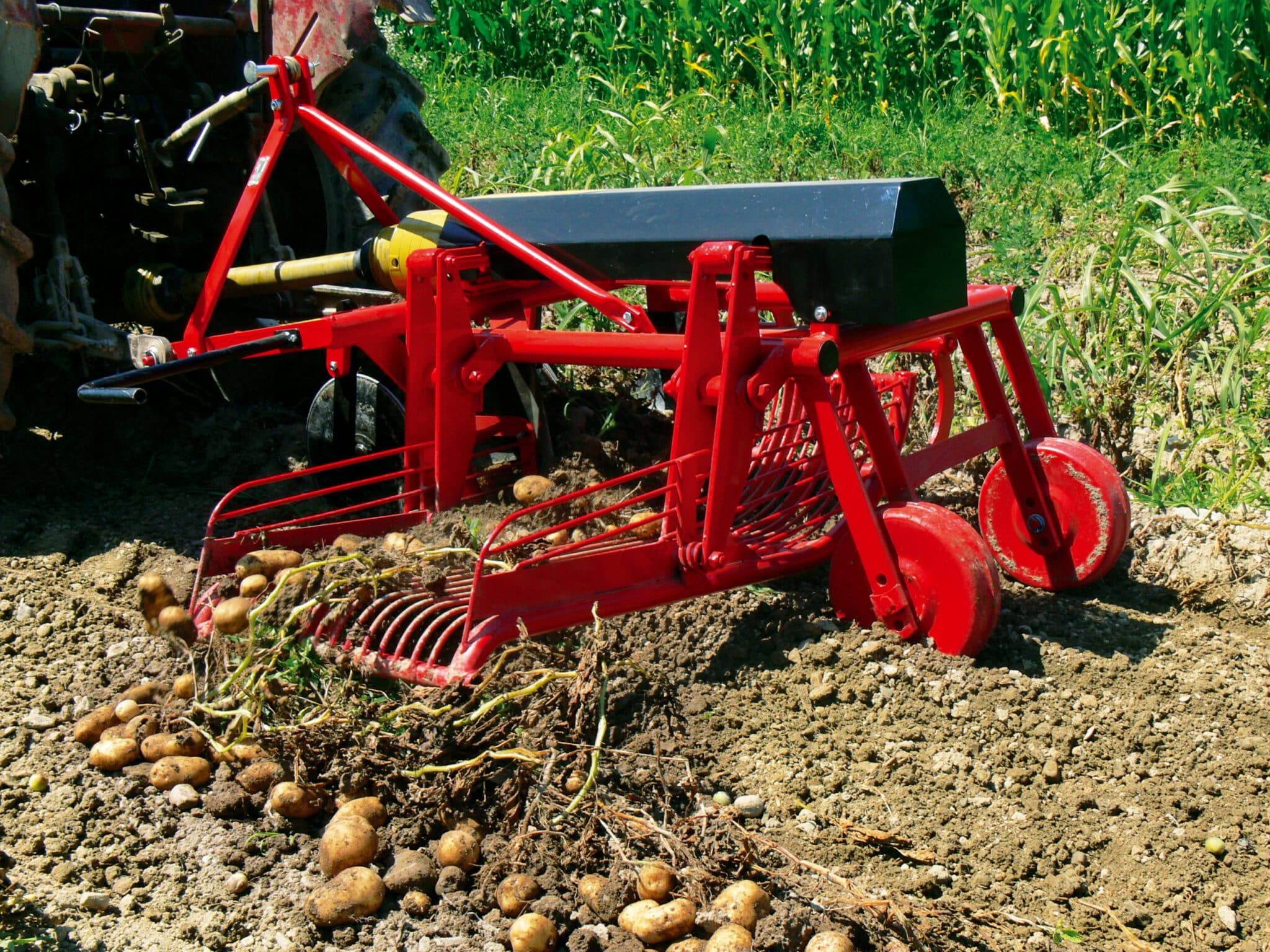 Копать картошку мотоблоком