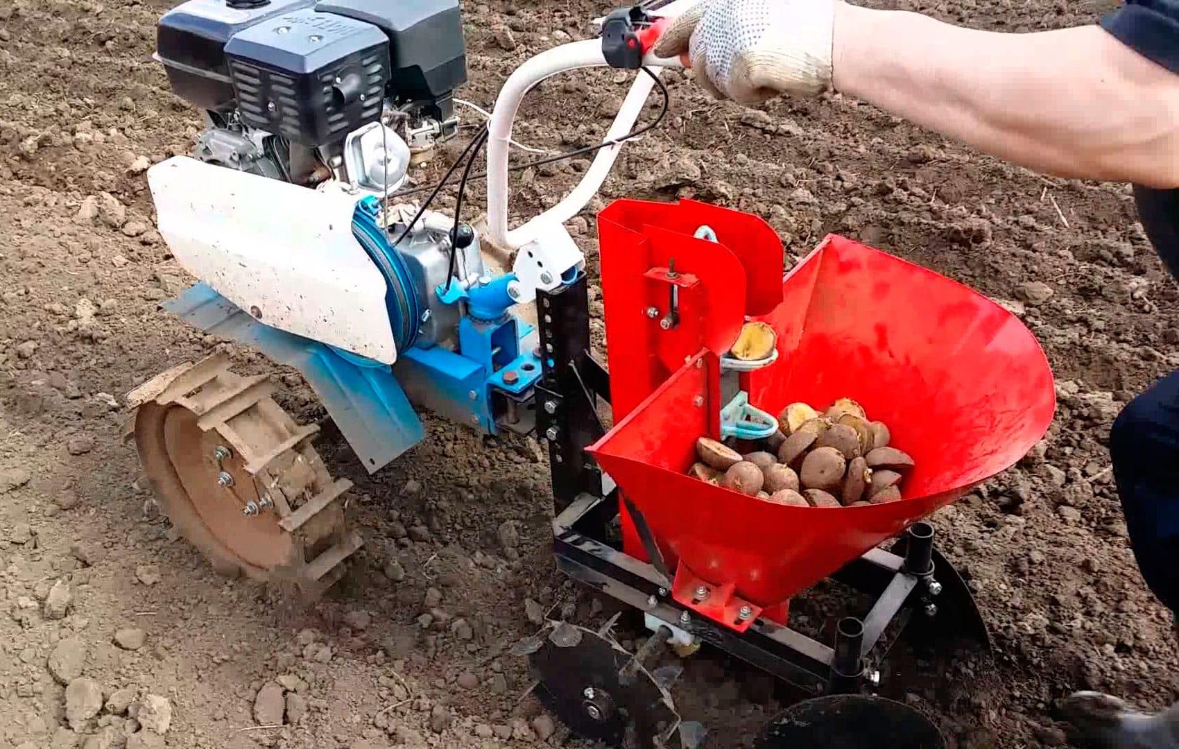 Сажаем картошку мотоблоком