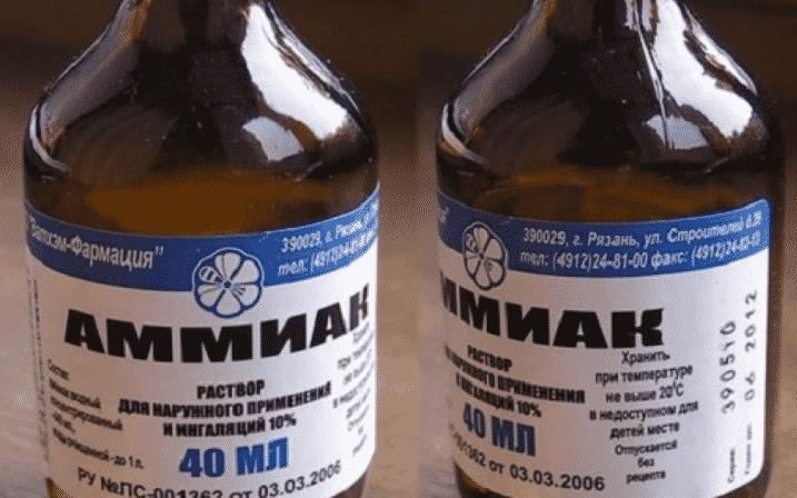 Аммиак - средство от муравьев на огороде